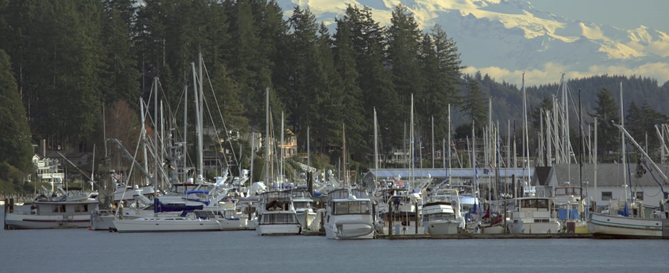 Harbor Accomodations