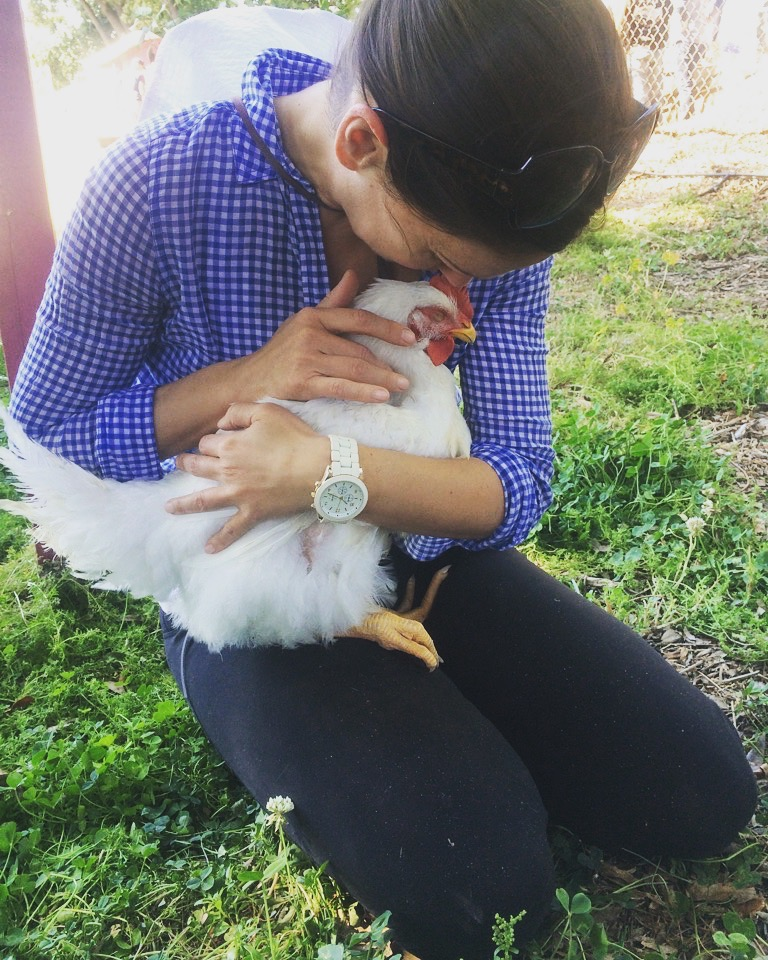 I had no clue chickens were so soft and cuddly!