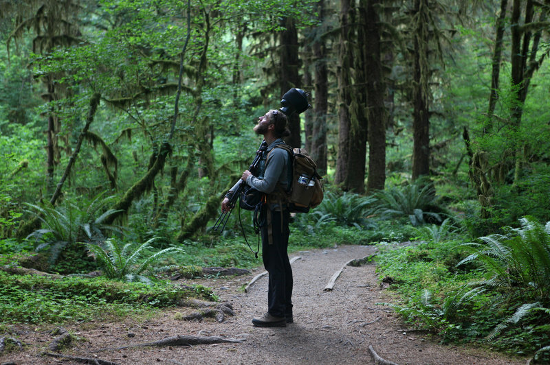 "Matt Mikkelsen carries ""Fritz,"" his microphone system, to the path in the Hoh Rain Forest that leads to One Square Inch of Silence in Washington's Olympic National Park.  Samir S. Patel/Atlas Obscura"
