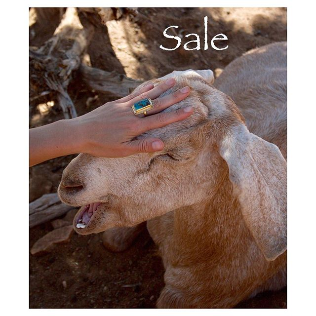 Two days left to receive 40% off. Just send us your email and we'll send over the code. ✨🐐 . #cultivate.la #sale #vegan #veganproducts #40 #goat #turquoise #turquoisejewelry #compassion #love #cultivate