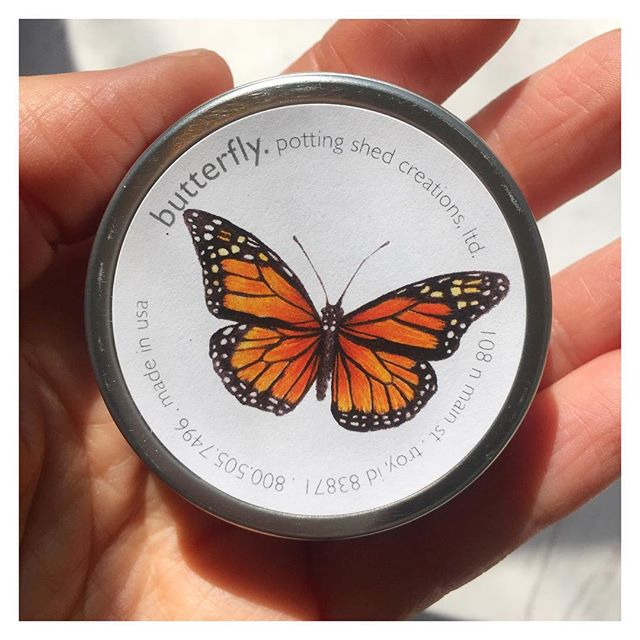 It's been a magical few days as the Painted Ladies migrated North through Los Angeles. You can keep the magic alive with these garden sprinkles that grow flowers butterflies are attracted to. 💛🦋✨ . #cultivate.la #butterflies #paintedladies #butterflymigration #magical #beautiful #garden #gardensprinkles #love #nature #vegan #vegansofig #getoutside #cultivate