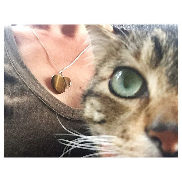 Tiger's eye: One is grounding, the other very demanding of treats. Grounding version available in our Accessories section. . #cultivate.la #tigerseye #stone #pendant #heart #love #grounding #givemetreats #cat #catsofinstagram #adoptdontshop #vegan #vegansofig #tabby #stinker #truelove #compassion #cultivate
