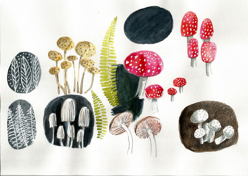 JANE_NEWLAND_FUNGI_WATERCOLOUR.jpg