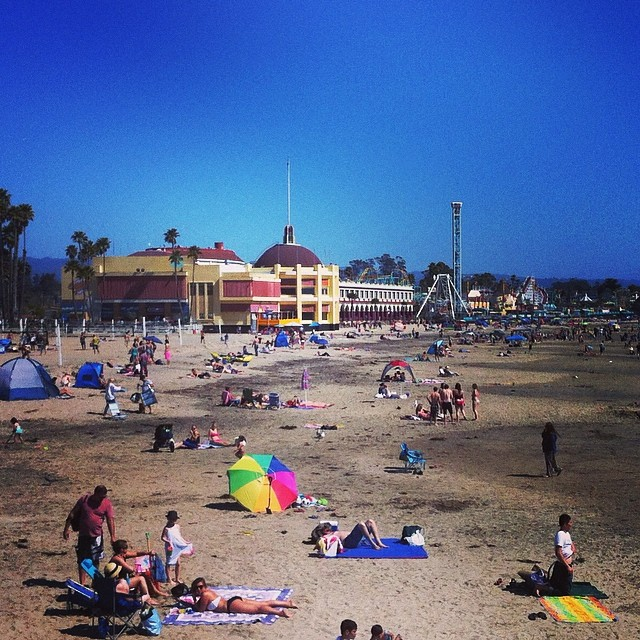 There's life on the beach! #santacruz #springbreak