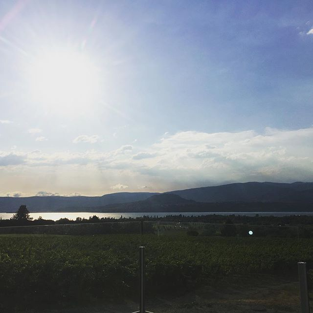 Is that... Blue Sky!? . . The smoke has cleared up here at @tantaluswine and it couldn't be a more beautiful evening! So stoked to play for their Riesling's 40th anniversary! . . #okanagan #kelowna #winery #livemusic #folk #westcanadianfolk #touringband #winieries #tantalus #riesling #oldgrowth #caribooandwhiskey