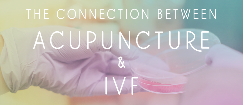The Connection Between Acupuncture Ivf Sweet Beet Acupuncture