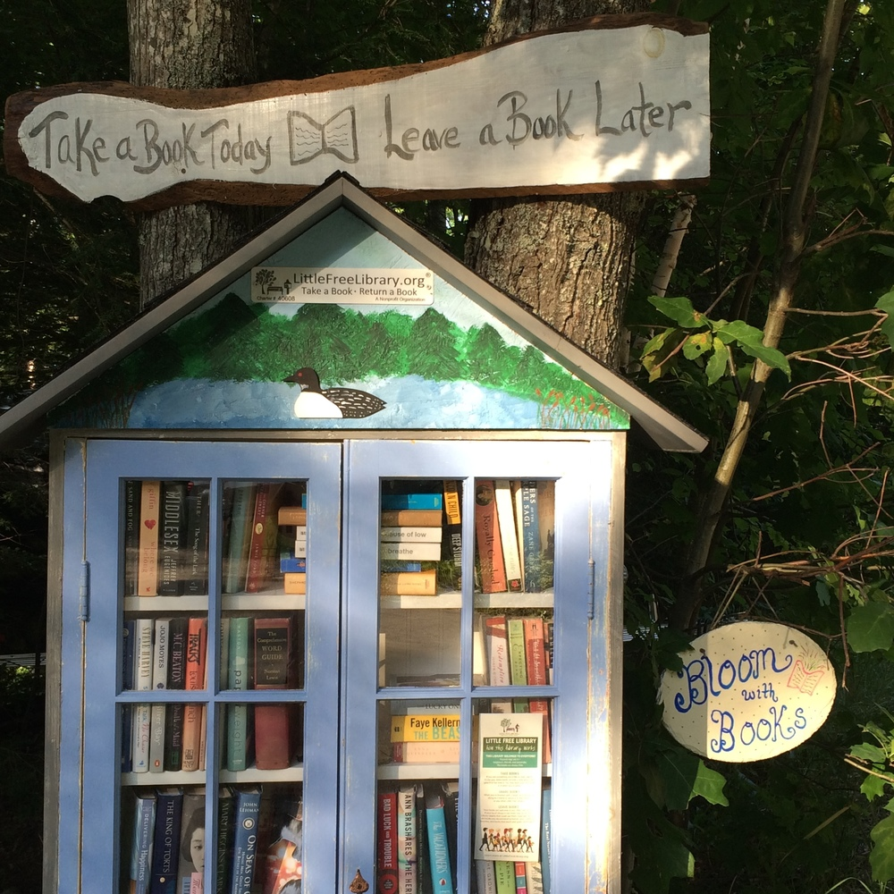 All of the hand-painted elements provide this Little Free Library with it's own unique personality.