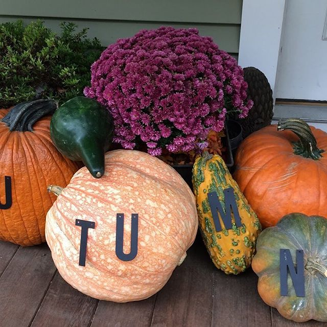 "Enjoy this quick and #simple way to boost the personality of any #autumn display! Visit our #blog to see my original use of the 'AUTUMN"" letters!  https://www.tuliving.com/blog/2017/9/20/getting-a-big-bang-for-small-bucks -Kathy Inspire yourself and others today!"