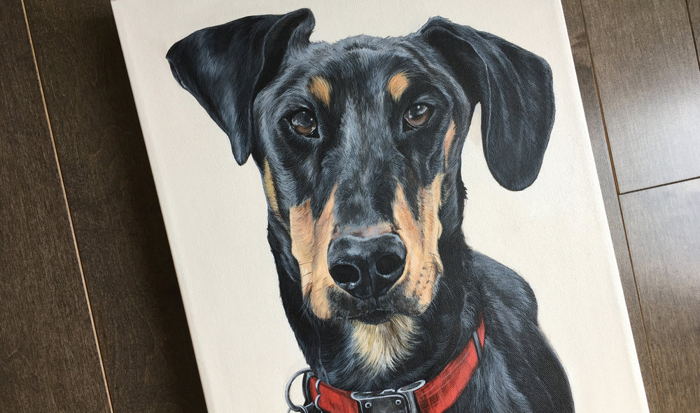 Tubal (Doberman Pinscher) portrait