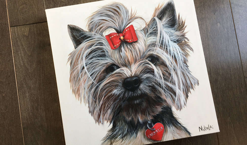 Carmella (Yorkshire Terrier)