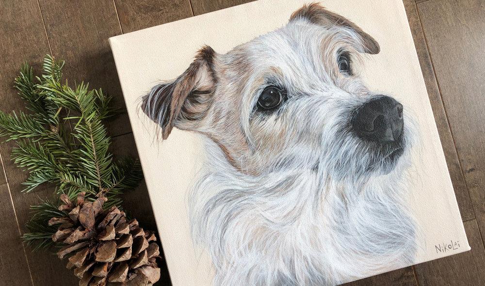 Cracker (Jack Russell Terrier)