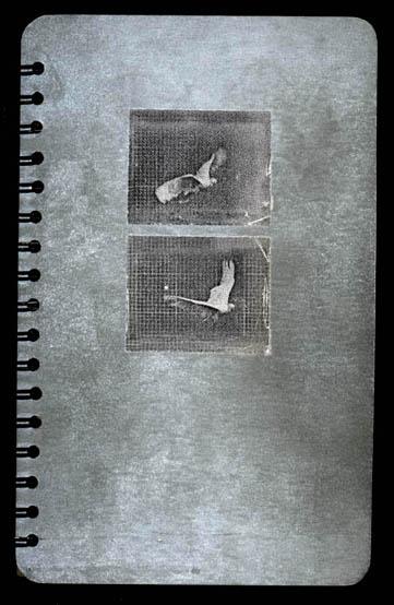 book013_cover-1.jpg