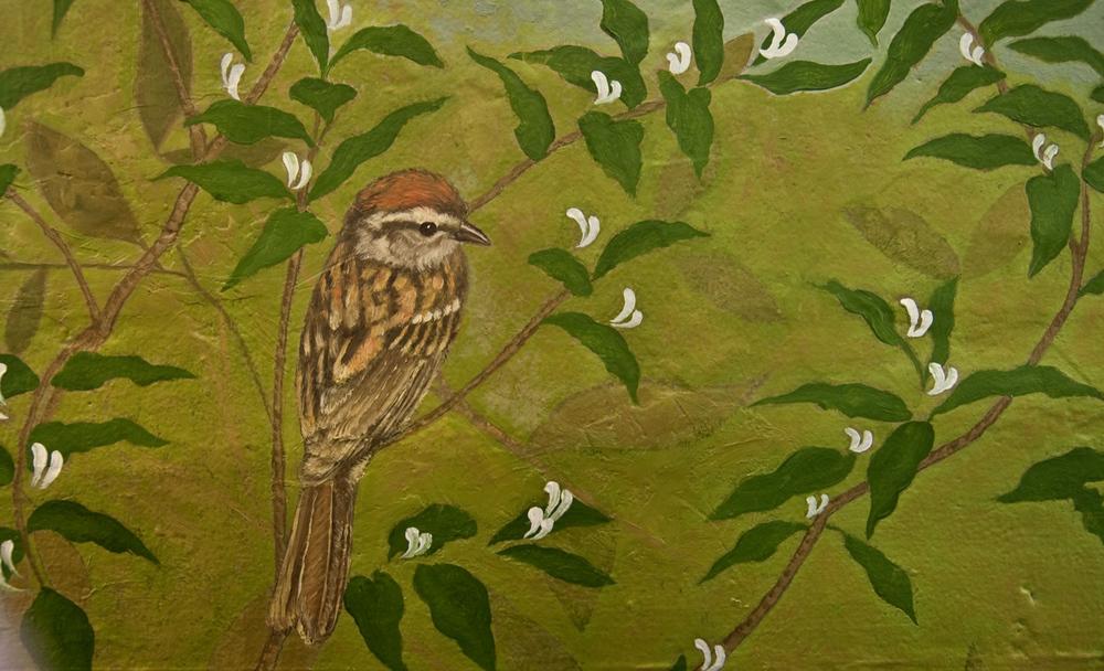 red-sparrow.jpg