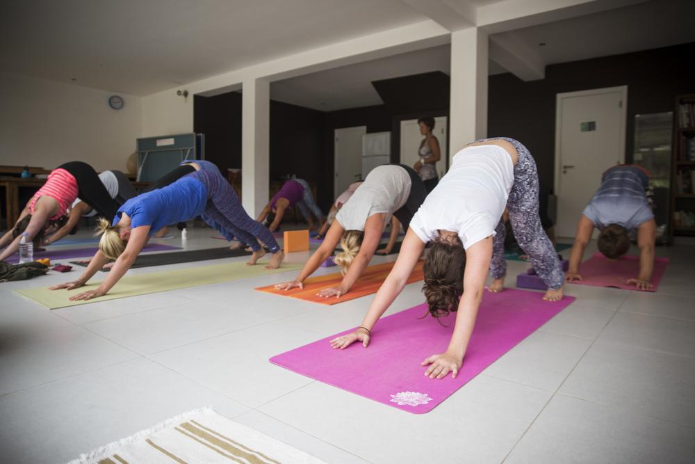 Yoga Portugal-08282.jpg