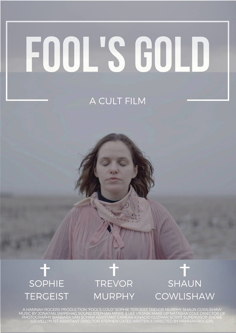 Fool's Gold poster.jpg