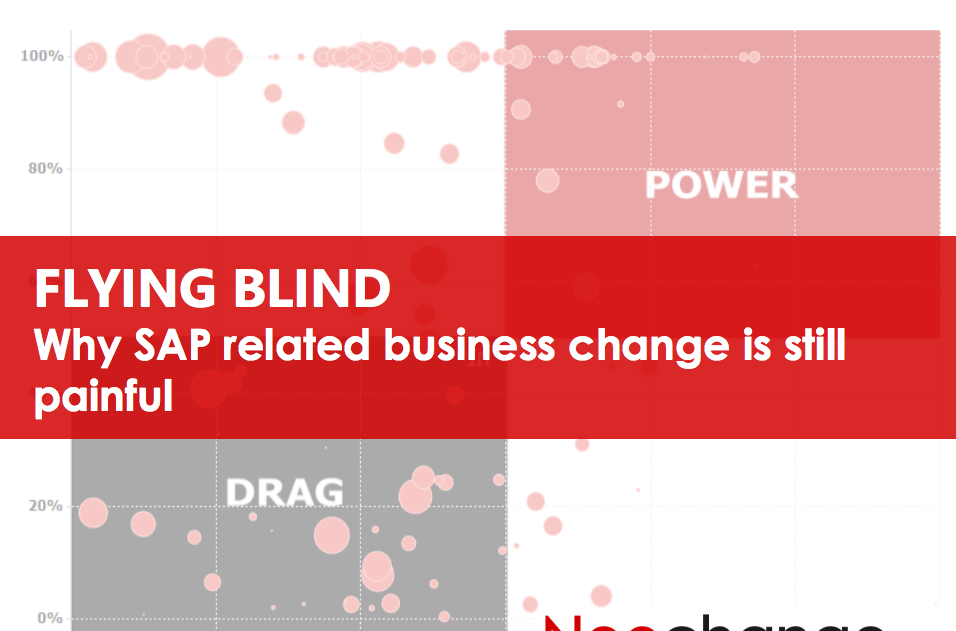Flying Blind - Why SAP related business change is still painful
