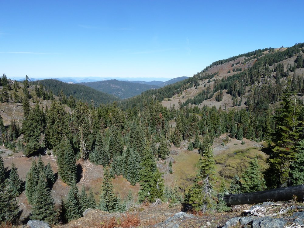 The Alex Hole Meadows, at the heart of the beautiful and remote Siskiyou Crest. Photo by L. Ruediger.