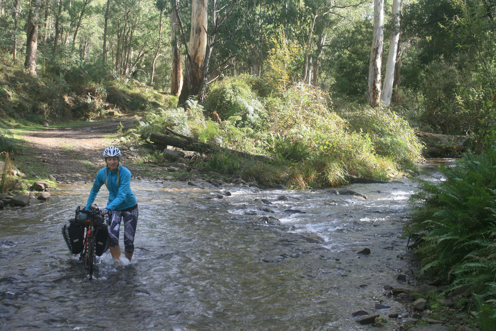 mount murray track high country cycle touring