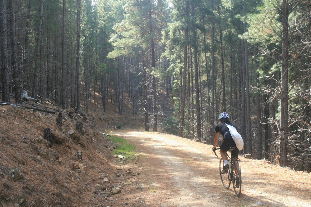 goldfields track leanganook victoria bikepacking