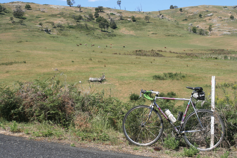 ruffy strathbogie road cycling