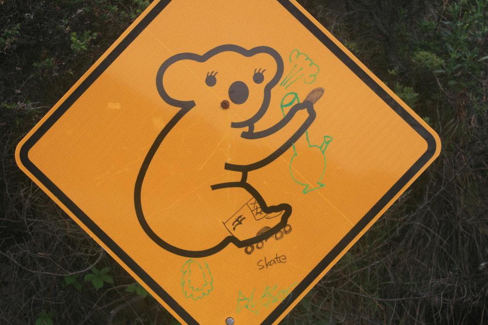 great ocean road koala roadsign