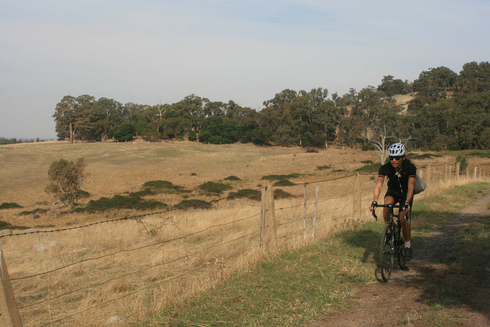 goldfields track coliban channel cycling