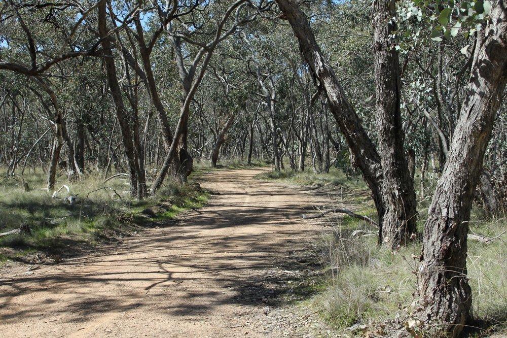 Ridge Track Metcalfe