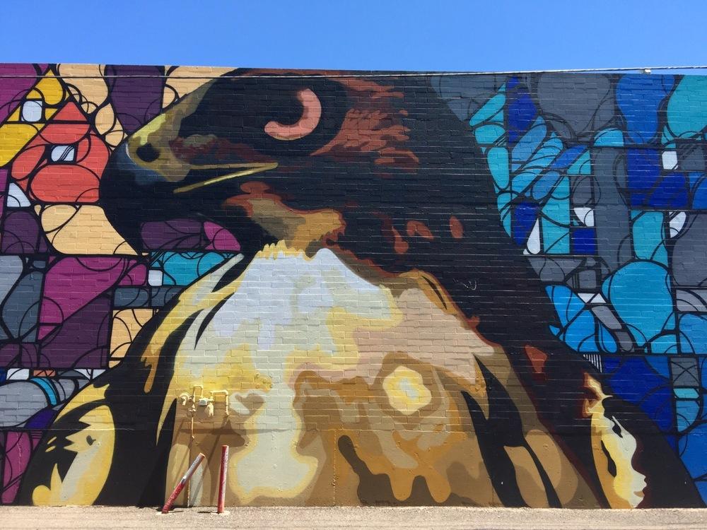 Eagle - JB Snyder