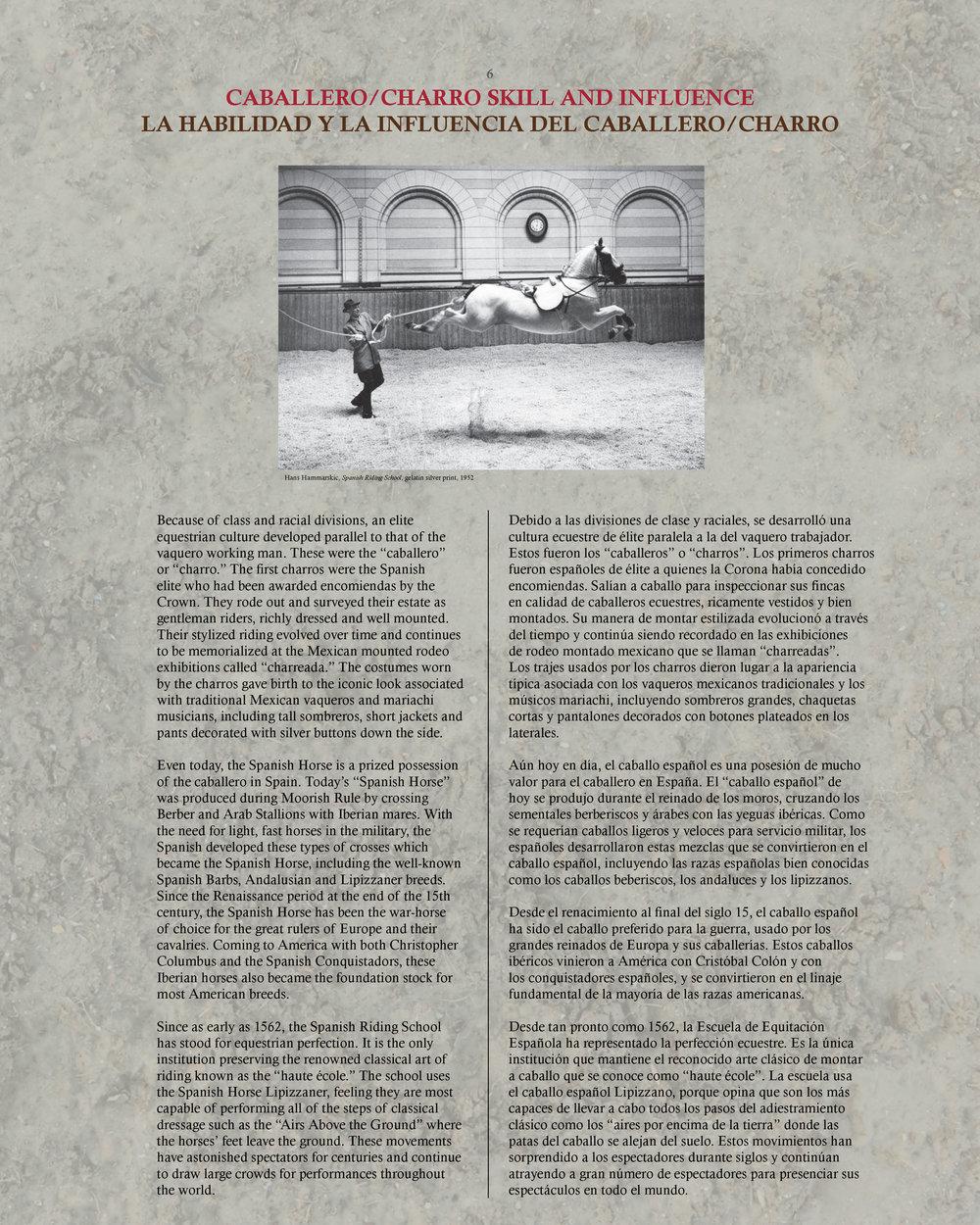 Vaquero Didactics 18x24_Page_6.jpg