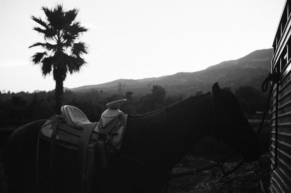 Sespe Mountain Ridgeline, Fillmore, CA, 2014