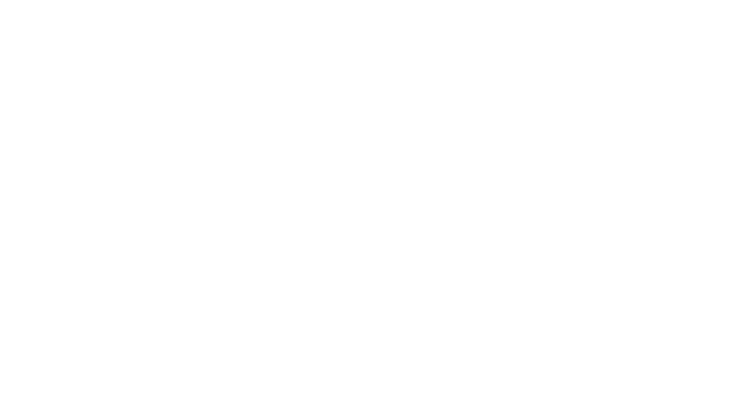 Accelerated Equity LLC