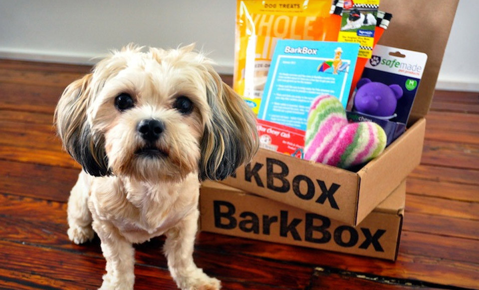 Image via BarkBox