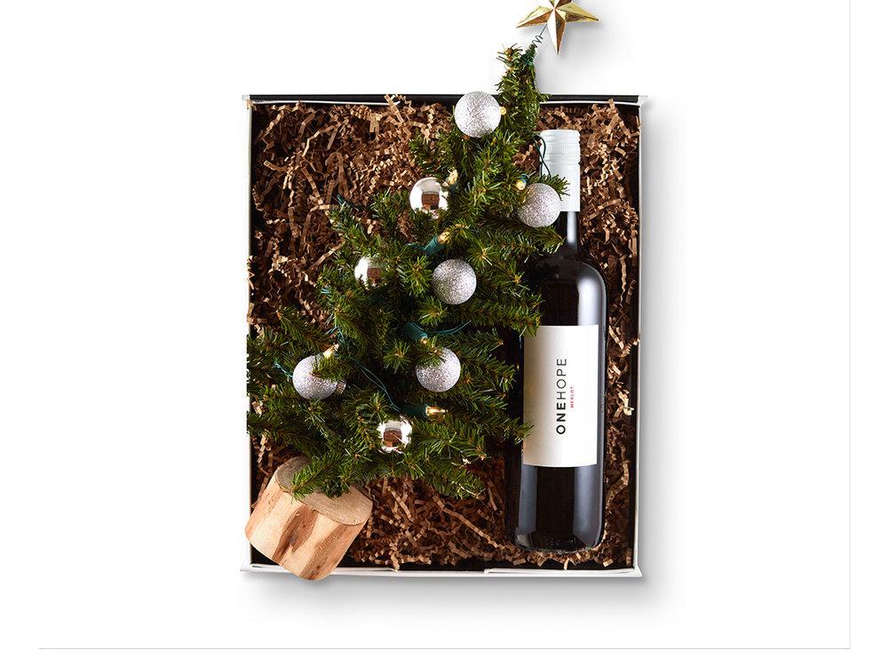 One Hope Christmas in a Box.jpg