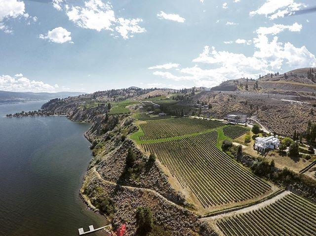 Aerial shots over @evolvecellars in Summerland. Nice views, nice wine ;) 🍷👍 -- #bcwine #explorebc #imagesofcanada #vineyard #winery #winewednesday #explorecanada #wine #okanagan #summerland #fly3dr #dronestagram #travelstoke