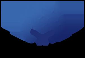 SPW Logo- single line.png