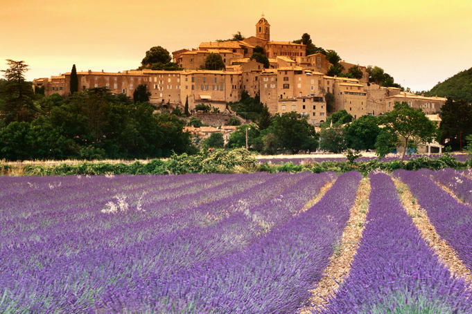 Provence Reservation - Lavender tour, Wine tour, excursion in Provence
