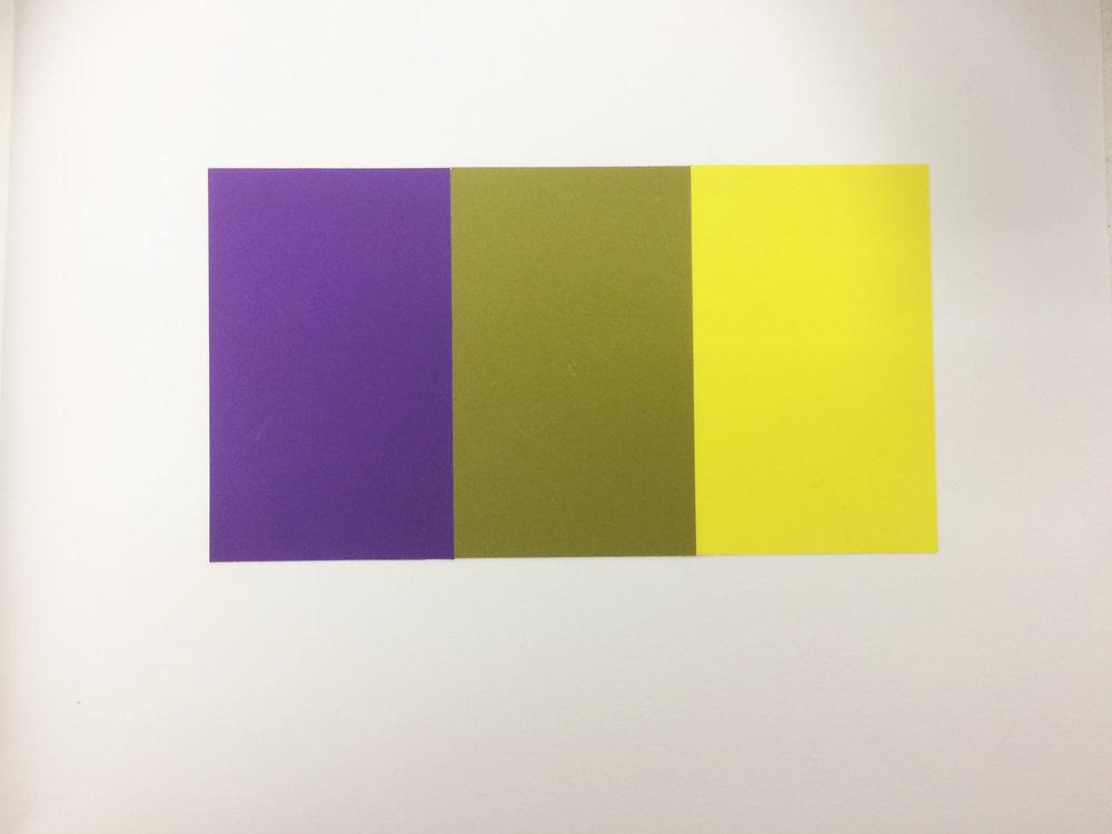 _Menon_Sreelakshmi_Middle Mixture in Color Aid Sample.jpg