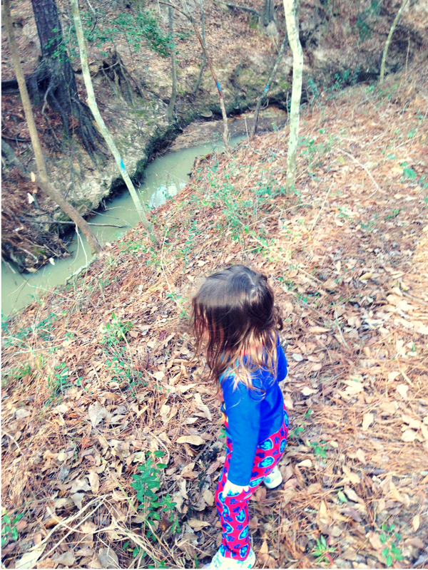 The little explorer made still after finding the creek.