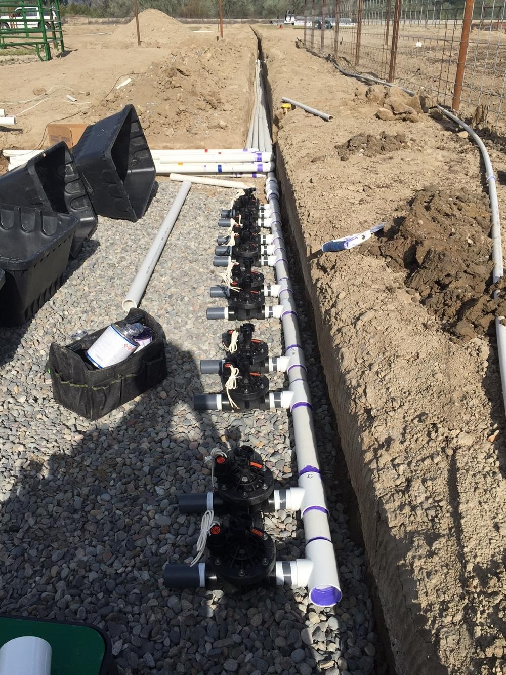 Sprinkler install Grand Junction TallgrassLC.JPG