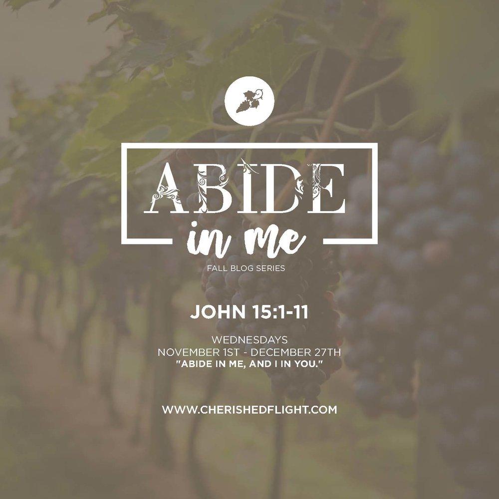 AbideInMe (5)_Page_1.jpg