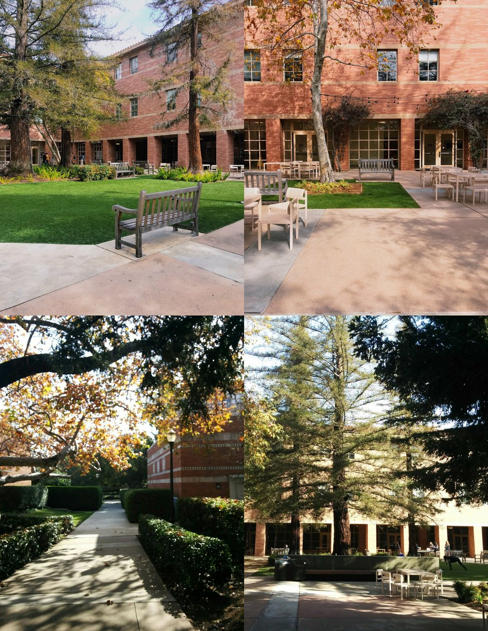 Nook to the left of Dodd Hall
