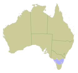Bass Strait (marked blue) is named for George Bass