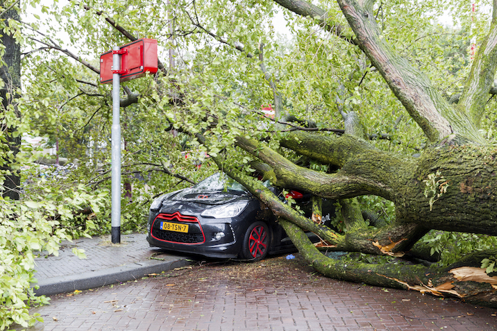 Cyclones leave behind lots of damage . ©iStock