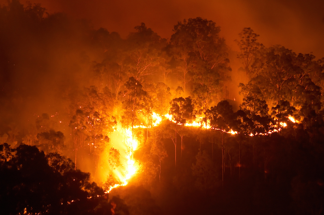 Bushfires cause a lot of damage each year in many parts of Australia. © Getty Images