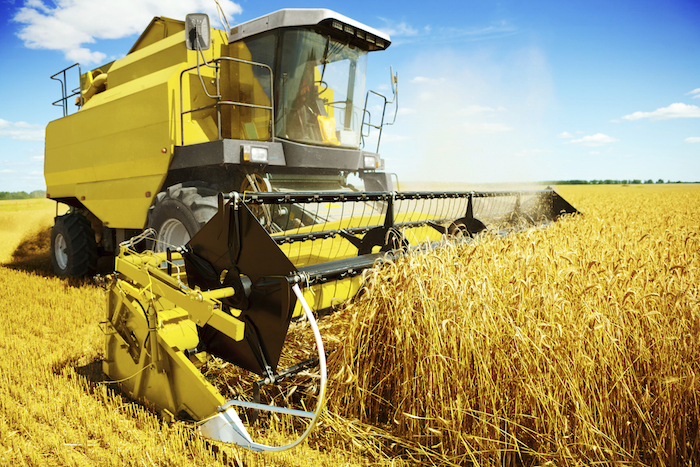 A harvester is a machine that cuts the grain. ©iStock