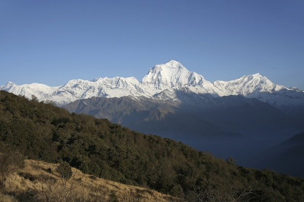 Mountains in Nepal, one habitat for Asiatic black bears. ©Getty Images