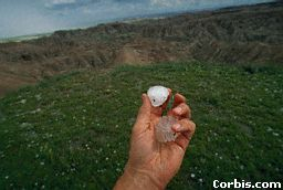 A large hailstone.