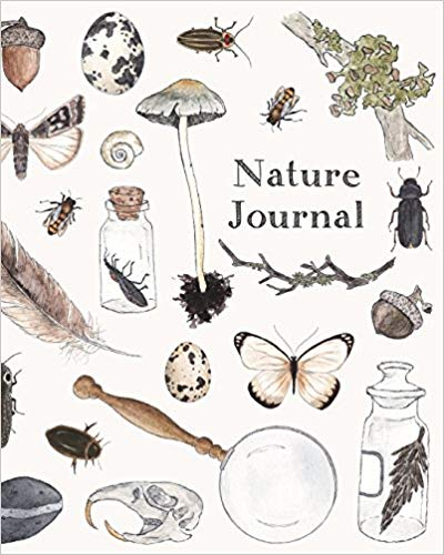 Nature journal - Any blank pad will do, but the thicker the better, especially if they will paint in it. I thought this one was sweet.