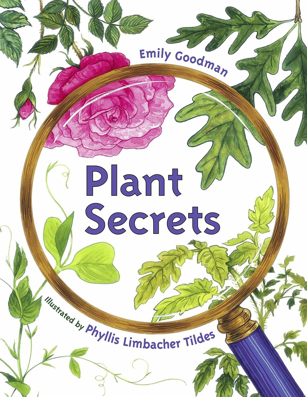 Plant Secrets - A simple and playfully curious introduction to botany and primary nature science. You can't go wrong with a book about nature! It is so much more than that - nature teaches us more about every element of being human than anything else.