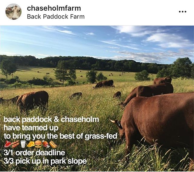 We're coming to Brooklyn— get used to it! It'll be a regular thing but you should get in early. We're collaborating with our Big Sister farm @chaseholmfarm to bring our goods down south. There's a great website (linked in bio) that will let you do some shopping through our shared inventory of beef, dairy, pork, etc and we will deliver your cart to Park Slope! #linkinbio